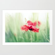 So terribly beautiful... Art Print