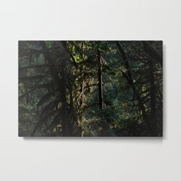 Dark Natural Necessity - Oregon Metal Print