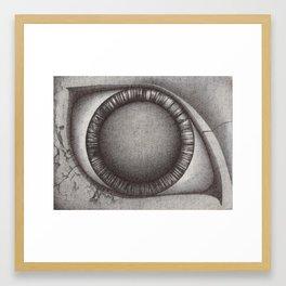 The Eye. Framed Art Print
