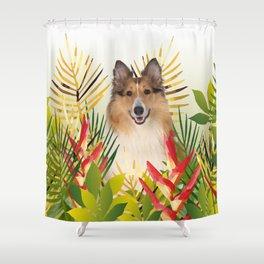 Collie Dog sitting in Garden Shower Curtain