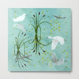 little egrets Metal Print