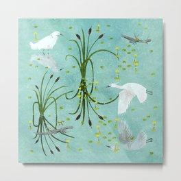 little egrets Metal Print