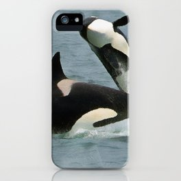 Playful Orcas iPhone Case