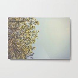 Leaves ∆ Metal Print