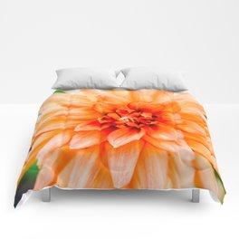 The Orange Dahlia Cactus Comforters