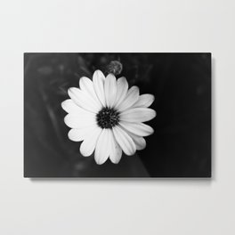 Who Knew There Could Be So Much Darkness In A Pretty Flower? Metal Print