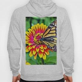 Monarch Butterfly Macro Hoody