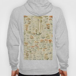 Mushrooms // Champignons III by Adolphe Millot XL 19th Century Science Textbook Diagram Artwork Hoody