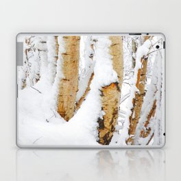Snow Covered Birch Trees Laptop & iPad Skin