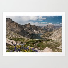 Alpine Lakes, Wildflowers and Mountains in the Wyoming Wilderness Art Print
