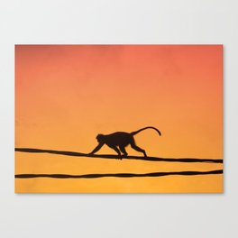 On The Wires Canvas Print