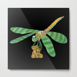 Dragonfly 2 Metal Print