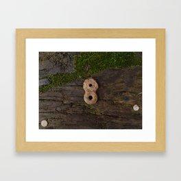 080 Framed Art Print