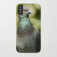 pigeon iPhone & iPod Cases featuring Pigeon by Vishal Wadhwani