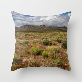 Painted_Desert 0211 - Southwest USA Throw Pillow