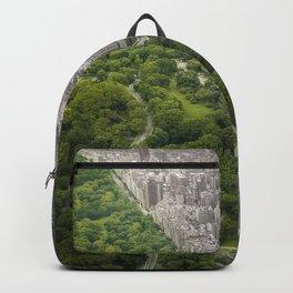 Man vs. Wild Backpack