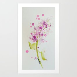 Lilac Sweet Pink Blossom watercolor by CheyAnne Sexton Art Print