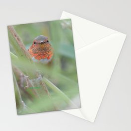 An Allen's Hummingbird Amid Mexican Sage Stationery Cards