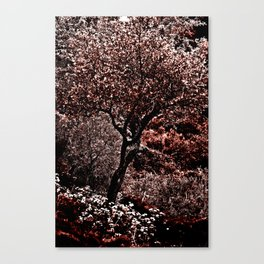 RED TREE - Triplex Canvas Print