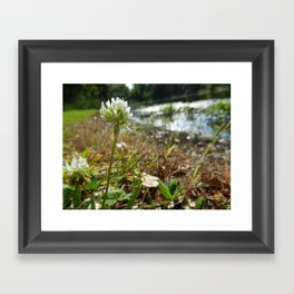 Into The Wind Framed Art Print