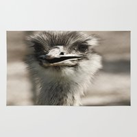 ostrich Area & Throw Rugs featuring Ostrich by Raymond Earley