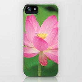 Water Lilies & Lotus iPhone Case