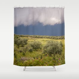 Before rain Shower Curtain