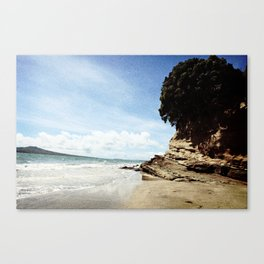 LAND Canvas Print