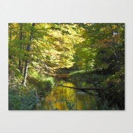 Fall in Upper Michigan Canvas Print