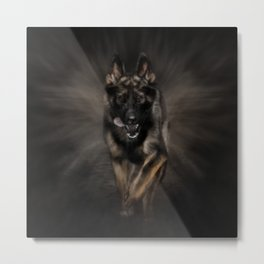 German Shepherd Dog - Running Metal Print