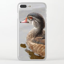 Young wood duck Clear iPhone Case