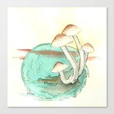 Mushroom Orb Canvas Print