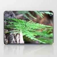 fern iPad Cases featuring fern by  Agostino Lo Coco
