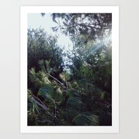 clear Art Prints featuring Clear by Nicholas Driver