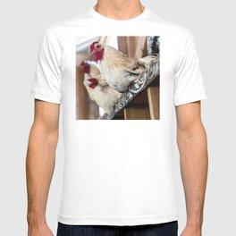 Roosting Hen T-shirt