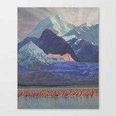 Wading flamboyance of flamingos Canvas Print