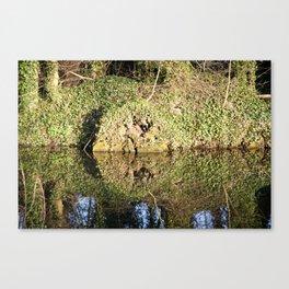 Reflection and circle Canvas Print