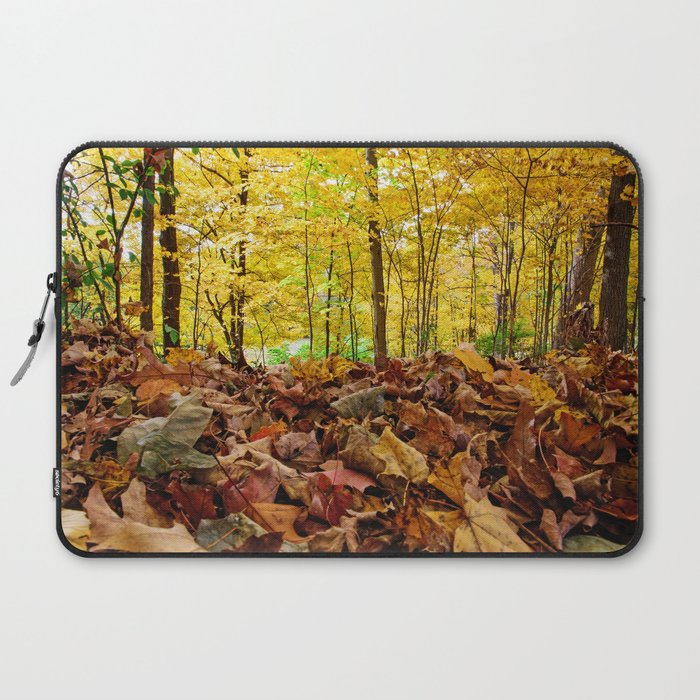 Down Low Laptop Sleeve