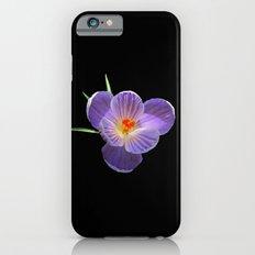 Think Flowers - Purple Crocus Slim Case iPhone 6
