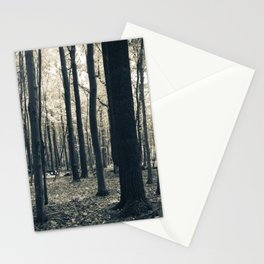 Peaceful Repose Stationery Cards