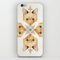 kitten iPhone & iPod Skins featuring kitten by Manoou