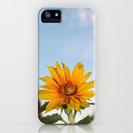 My Sunflower, Julia #7 iPhone Case