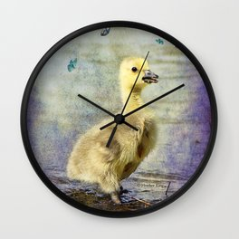 Quiet and calm Wall Clock