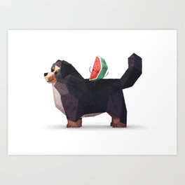 Watermelon on Bernese Mountain Dog Art Print