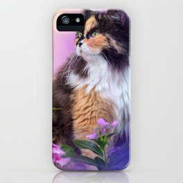 Calico Kitty In The Garden iPhone Case