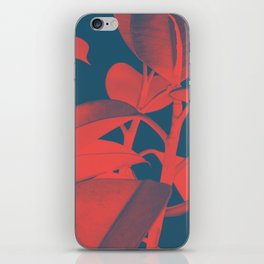 Rubber Plant red and blue iPhone Skin