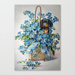 Dachshund and Forget-Me-Nots Canvas Print
