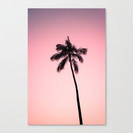 palm tree ver.pink Canvas Print