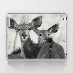 Kudu Laptop & iPad Skin