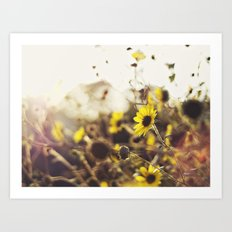 Wild Sunflowers Art Print
